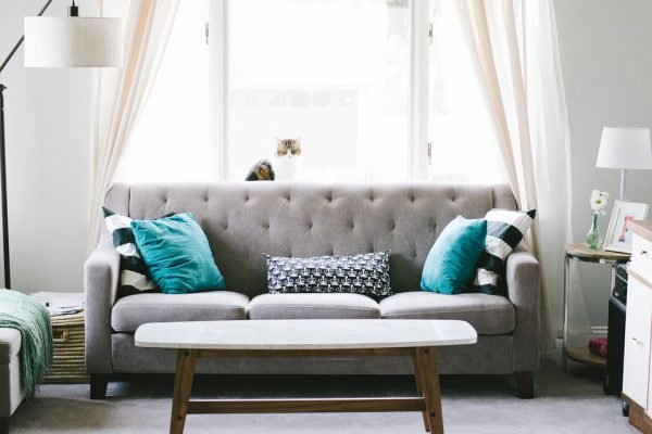 Distinctive sort of Sofas and Sofa Beds