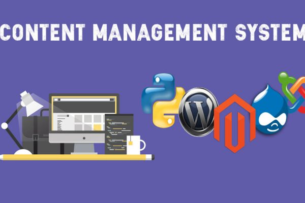 Best Content Management System