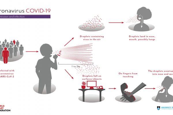 how is coronavirus transmitted